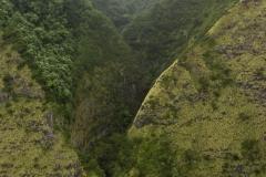 151124_Blue_Hawaii_19-3